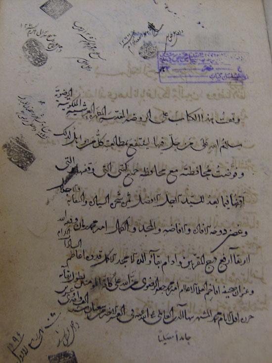 مشد جایگاه سادات رضوی